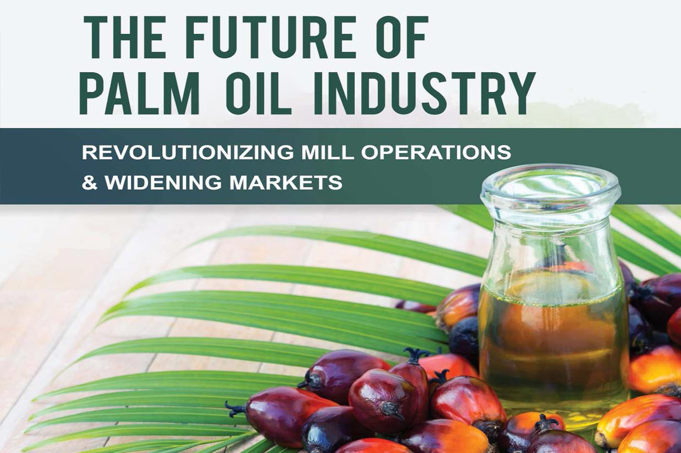 the-future-of-palm-oil-industry